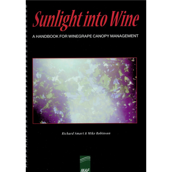 Sunlight-into-wine